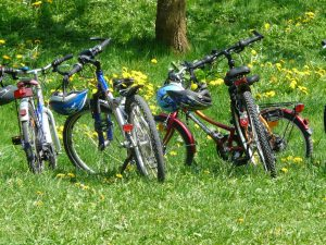 bicycles-6895_1920